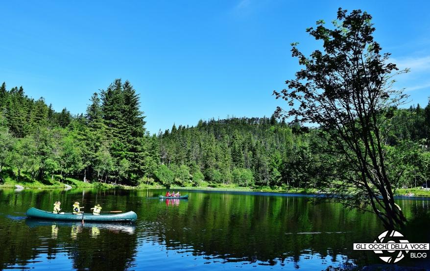 Norvegia, Bergen : escursione sul Monte Fløyen